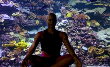 L'Aquarium de Paris lance le yogAquarium…